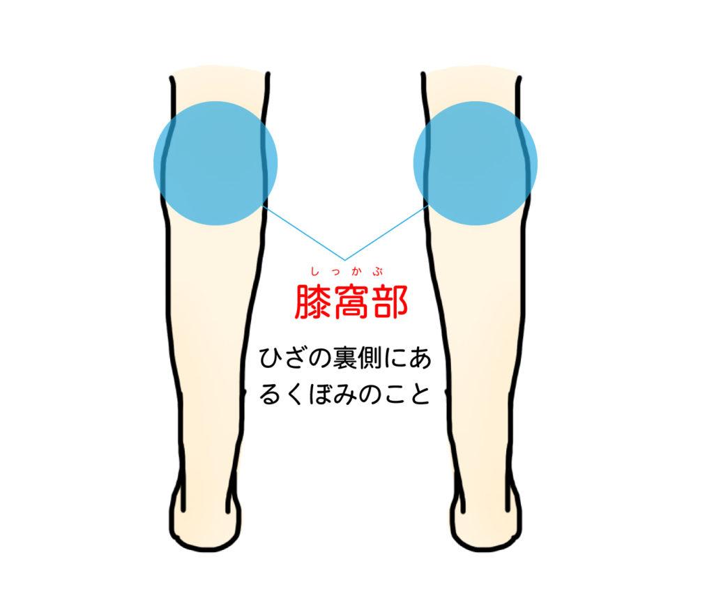 膝窩部|ひざの裏側にあるくぼみのこと